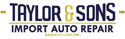taylor & sons import auto repair